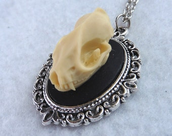 The Bat Skull Necklace - Taxidermy