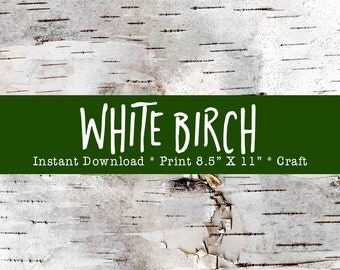 "White Birch Tree Bark Printable For Holiday Crafts DIY Instant Download Print From Home Or Local Printer On 8.5"" x 11"" Paper."
