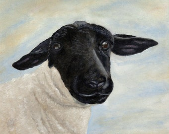 Sheep Print From Original Oil Painting Giclee Animal Art