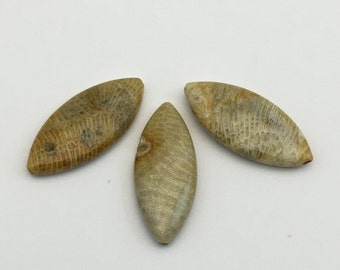 3 fossil coral stone bead/ 10mm x 30mm/ marquise shape  #PP049