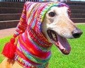 Dog hats/CUSTOM ORDER HAT/hand knit dog hat/greyhound hats/shepherd hat/dog warm neck/yorkie hat/dog hat/pet accessories