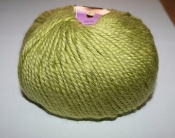 Warm yarn Lanoso Alpacana.