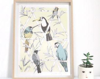 Limited Edition Tropical Bird Print, Parrot Illustration, Toucan Art