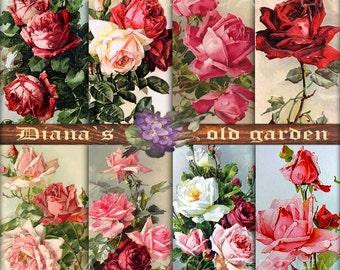 Vintage Roses digital images. Floral digital paper. Victorian Rose. Vintage Scrapbook Digital Decoupage paper 8,5x11 Rose backgrounds DG-62