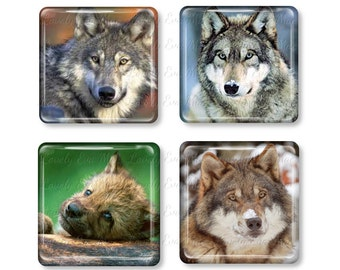 Set of 4, Wolf Magnets, Glass Tile Magnets, Glass Magnet, Refrigerator Magnets, Fridge Magnets, Wolves, Wolf Gift, Wilderness, Dog Gift