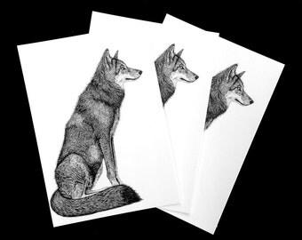 Wolf postcard -illustration - woodland - wildlife art - animal art - dog - nature - tradition art - vintage style - fine pen work - print