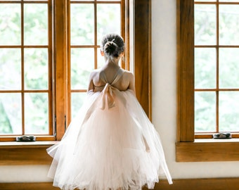 Blush Flower Girl Tutu Dress, Blush Flower Girl Dress, Flower Girl Tutu Dress, Flower Girl Dress