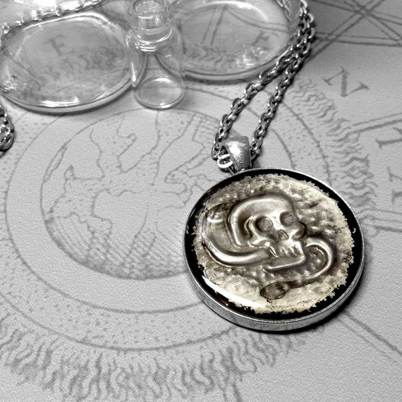 Skull & Graveworm : hand embossed anatomical metal pendant necklace
