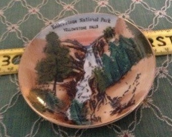 Vintage Collectible Yellowstone Park Plate