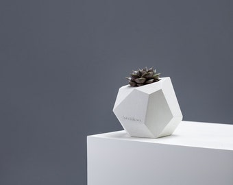 polyhedron planter in star white / geometric vase, minimalistic planter, puristic cutlery holder