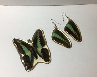 Vintage real butterfly resin earring pendant set