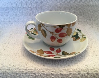 Apollo Porcelain, English Country Fruit, Nancy Calhoun, Cup and Saucer, Made in Thailand, Flat Cup and Saucer, 1990s