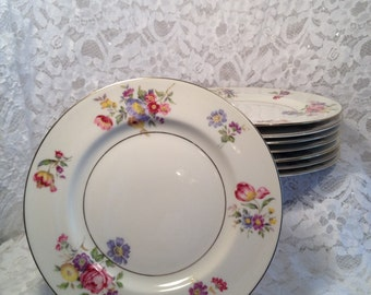 Lot of 8 Theodore Haviland Pasadena Pattern Limoges Salad Plates, Vibrant Garden Flowers Around Rim, Replacement Haviland.