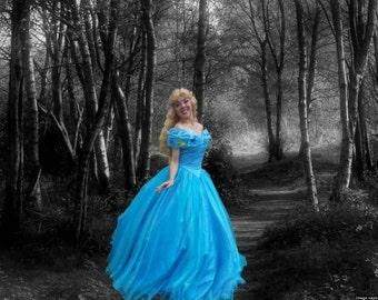Cinderella Adult Costume. 2015 movie dress.