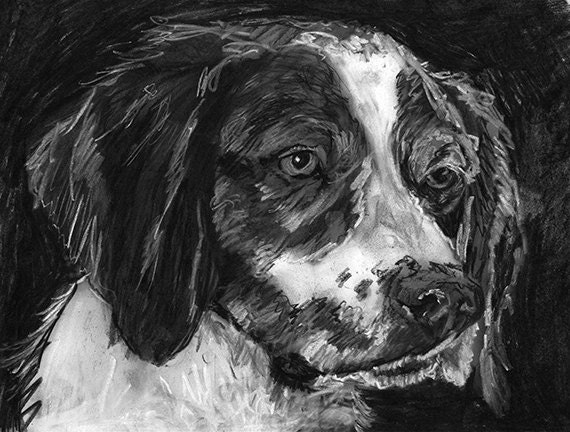 Brittany Spaniel Drawing Dog Print Charcoal Dog Art Print