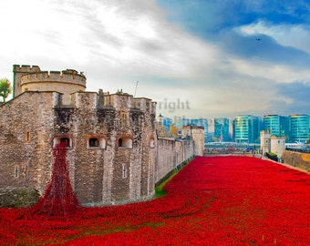 Blood Swept Lands and Seas of Red Poppies at The Tower of London England photographic print color photograph landscape picture poster art