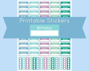 Birthday Stickers, Erin Condren Planner Stickers, Erin Condren Birthday Stickers, Erin Condren Stickers, Stickers for Erin Condren