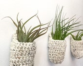 Three air-plant wall baskets with handles. Airplant holders, crocheted wall hangings. Speckled yarn.