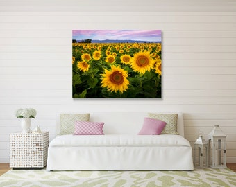 Large Canvas Flower Wall Art, Sunflower Home Decor, California Field Of Sunflowers, Yellow, Yolo County,  Bay Area Flowers, Floral Wall Art