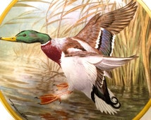 Limited Edition Franklin Porcelain Plate Collection -- Water Birds of the Worlds -- Basil Ede -- 1980s -- 052716CA2250