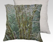 "Trees and Moss Photographic Pillow (18"" x 18"" and 22"" x 22"")"