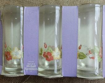 Set of 3 Woolworths Vintage Hi-Ball Floral Wild Rose Painted Glass Tumblers in Original Packaging