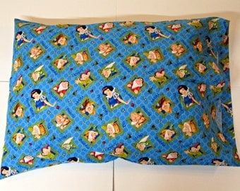 Pillow case / pillow covers
