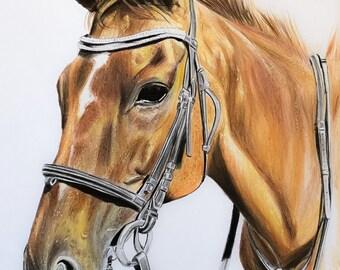 Benutzerdefinierte Pferd Zeichnung, original Pferdebild, Zeichnung von einem Pferd, Haustier Porträt des Künstlers, Haustier Porträts, Pferdebilder, Pferd Liebhaber Geschenke, Kunst