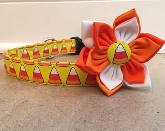 Dog collar, halloween dog collar, orange halloween dog collar, orange dog collar, Candy corn dog collar, flower , collar flower, dog flower