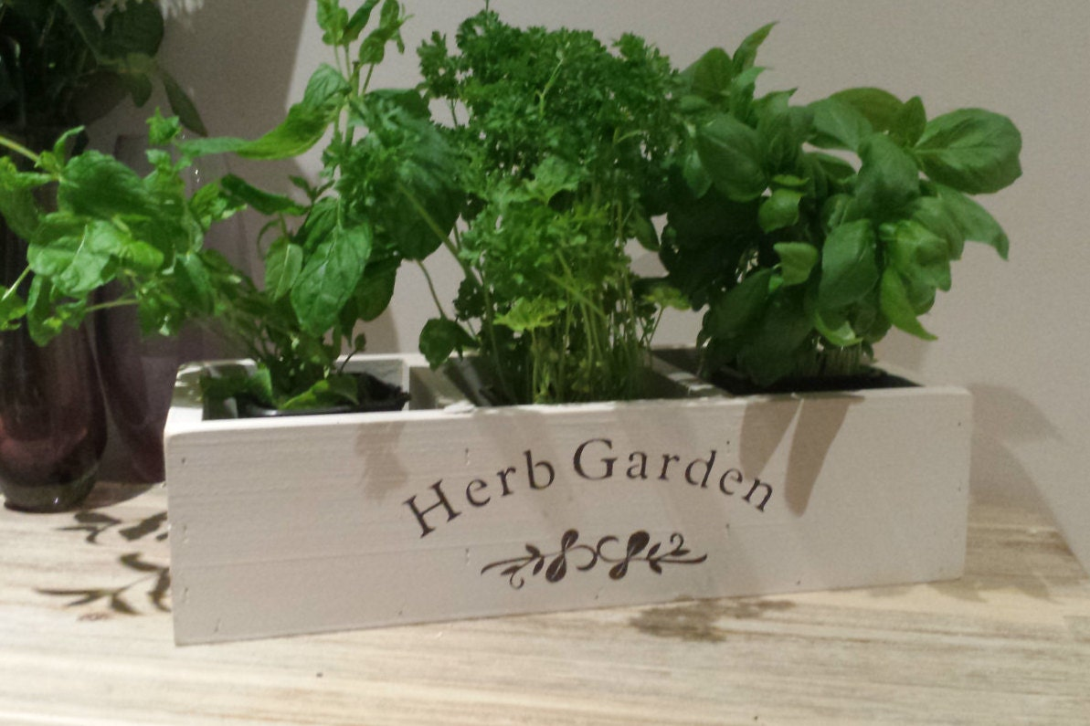 Herb Planter Kitchen Herb Planter Window Box Planter Indoor