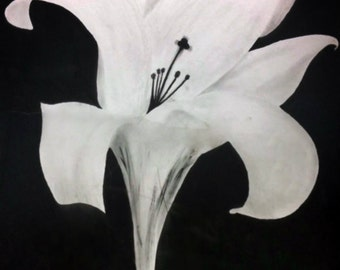 """Black and White """"Cross Lily"""" Painting"""