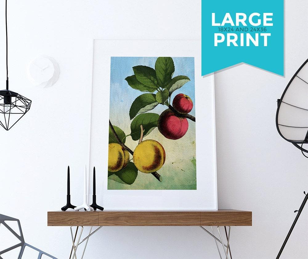 Art Prints For Kitchen Wall: Kitchen Wall Art Apple Apricot Print Kitchen Print Food