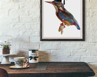 Kingfisher graduation bird download Vintage digital Image antique clip art png Iron On transfer 300dpi