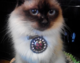 Accessory on the collar for your little pets.