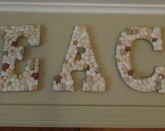 BEACH Shell Letters