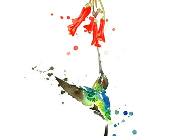 Hummingbird and Nectar Watercolor Painting Fine Art Giclee Print / Bird Painting / Flower Watercolor Painting / Wildlife Paintings