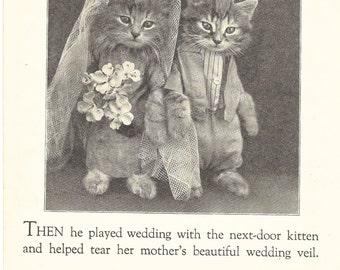 Kitty Cat Wedding, Original Vintage Children's Book Page, Bride, Groom, Cat Photo, Toothache, Harry Whittier Frees