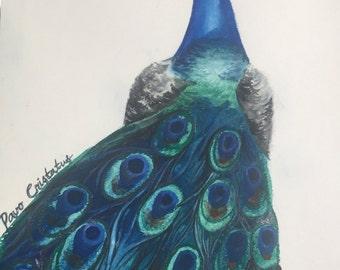 """Pavo Cristatus- Original Watercolor Painting 9"""" by 12"""""""