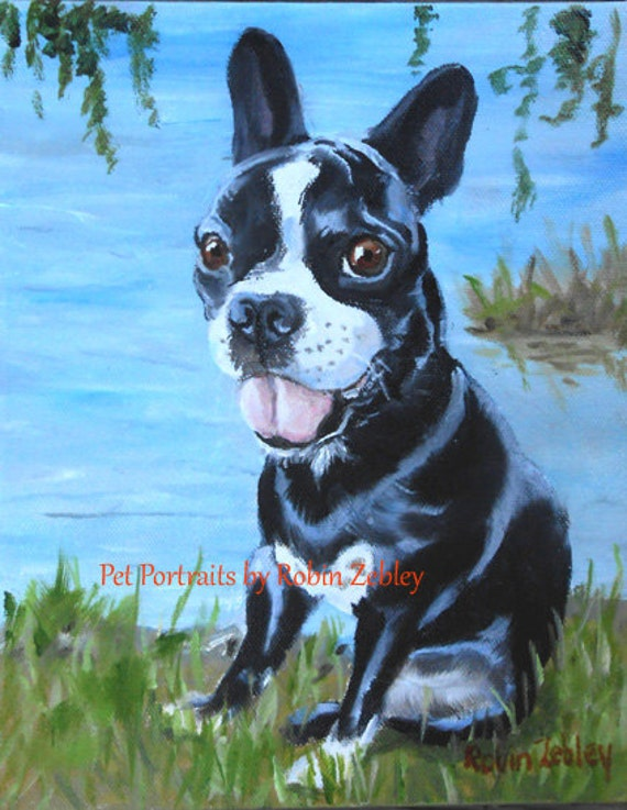 Yorkshire Terrier Portrait, Custom Oil Painting, by me, artist Robin Zebley