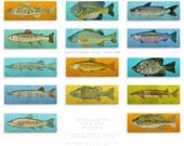 "Husband Gift- Freshwater Fish Art Series Large Art Block- Pick the Fish Print- 4"" x 11"" Fish Wall Decor Fisherman Gift for Dad- Gift for Him"