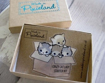 Crazy Cat Lady Brooch and gift box