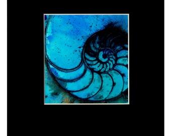 "Aqua Blue Sea Shell Painting, Ocean, Nautilus, Watercolor Art, Abstract, ""NAUTILUS SHELL 987"" Original Art Kathy Morton Stanion EBSQ"