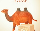 camel art, ABC art, toy photo, nursery art, nursery decor, letter c art, typography, childs room, letter art, alphabet photo, alphabet art