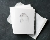 Set of 6 PHOEBE BIRD Cards and Envelopes, Blank Interior, Post-consumer Recycled Paper, Gray, Grey