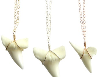 Shark Tooth Necklace • Simple Wire Wrapped Shark's Tooth • Genuine Shark Tooth Jewelry • Ocean Lover • Dainty Shark Tooth Necklace • Layered