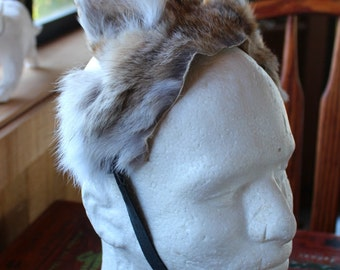 Coyote ears headdress - real eco-friendly coyote totem fur ears costume for totem ritual and dance