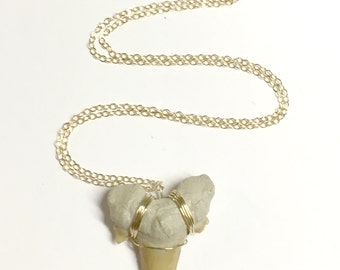 Reserved - Sharktooth Necklace - 14kt Gold Fill Fossil Shark Tooth Necklace- Tooth Pendant