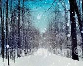 Winter Print, Blue, White, Nature Photography, Turquoise, Teal Wall Art, Rustic, Forest Print, Snowhere
