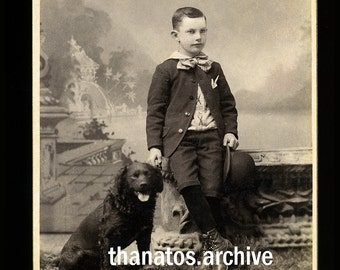 Vintage 1890s Cabinet Card Photo / Little Michigan Boy with Dog