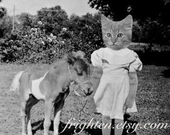 Cat in Clothes Art, Black and White Art, Mixed Media Collage, Cat and Pony Art, Anthropomorphic Art, frighten, Cat in Dress